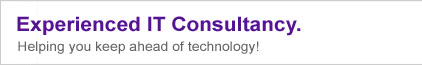 Experienced IT Consultancy